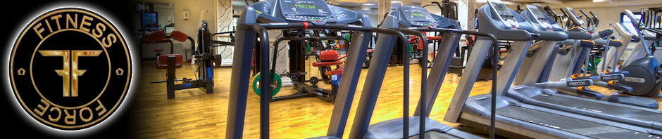 fitness force trelleborg priser
